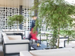 Pit Stop Lounge & Bar Hotel Säntispark